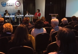 Advocating for Financing of Grassroots Communities especially Women – Budapest Water Summit 2016