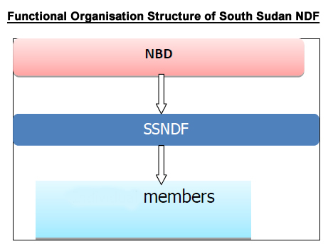 Functional Organisation Structure of South Sudan NDF