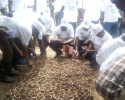 Tying Loose Ends to Save The Environment: Burundi Dedicates and Observes Days to Water Quality, The Fight Against Drought, Protection of Biodiversity and The Environment