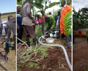 Empowering Coffee Farmers to Fuse Both Coffee Growing and Commercial Horticulture Using Low-Cost Irrigation Systems